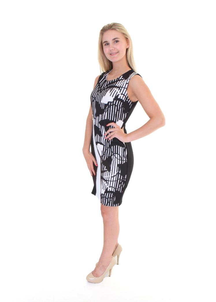 249.95 dress